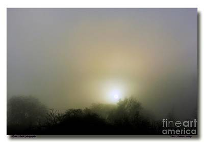 Photograph - Awakening by Chris Anderson