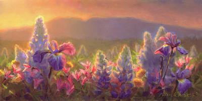 Lupine Painting - Awakening - Mt Susitna Spring - Sleeping Lady by Karen Whitworth