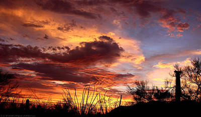 Az Monsoon Sunset Art Print by Elaine Malott