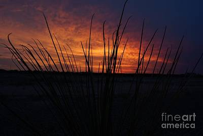 Photograph - Az Sunset by Kerri Mortenson