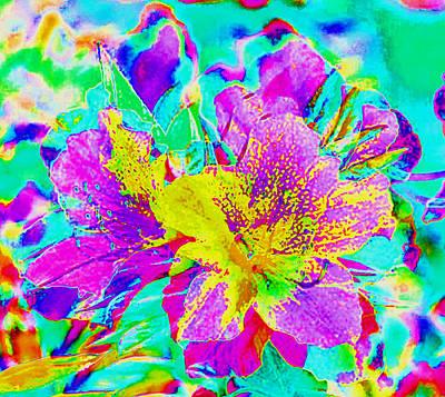 Photograph - Azalea Abstract by Stephanie Grant