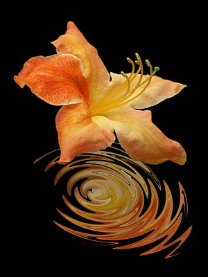 Photograph - Azalea Ripples Vertical by Gill Billington