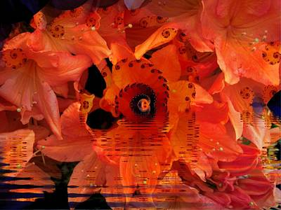 New Zealand Mixed Media - Azalia Sunrise by Nancy Pauling