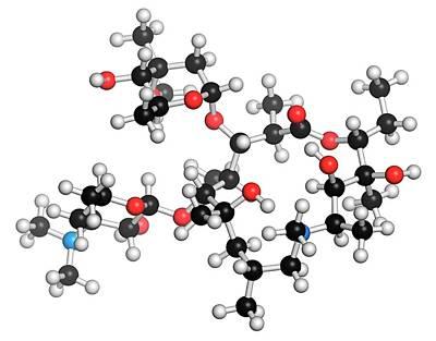 Molecule Photograph - Azithromycin Antibiotic Drug Molecule by Molekuul
