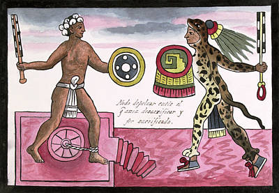 Human Sacrifice Photograph - Aztec Sacrificial Fight by Library Of Congress