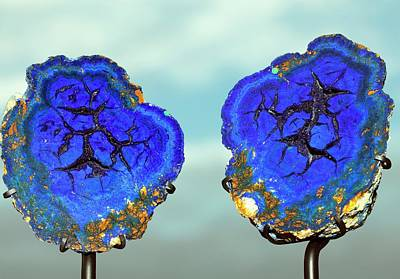 Painter Photograph - Azurite Nodule by Dirk Wiersma
