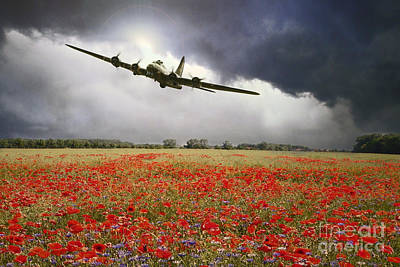 Poppies Field Digital Art - B-17 Poppy Pride by J Biggadike