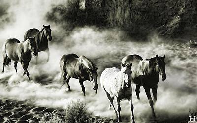 B And W Hosses Art Print by Robert Rhoads
