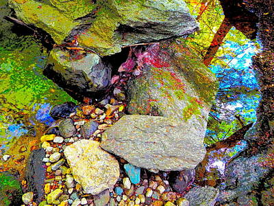 Photograph - B Childs Brook 57 by George Ramos