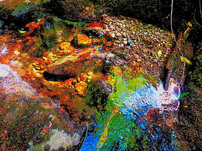 Photograph - B Childs Brook 66 by George Ramos