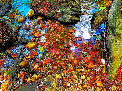 Photograph - B Childs Brook 80 by George Ramos