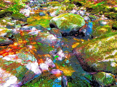Photograph - B Childs Brook 85 by George Ramos