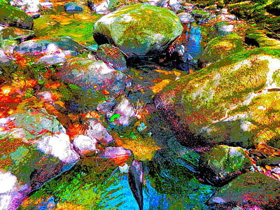 Photograph - B Childs Brook 86 by George Ramos