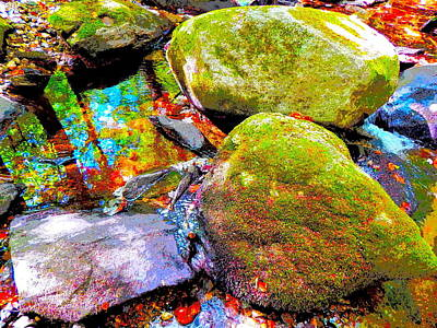 Photograph - B Childs Brook 88 by George Ramos
