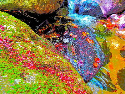 Photograph - B Childs Brook 90 by George Ramos