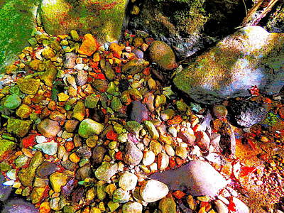 Photograph - B Childs Brook 41 by George Ramos