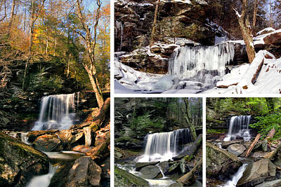 Photograph - B Reynolds Falls In Every Season by Gene Walls