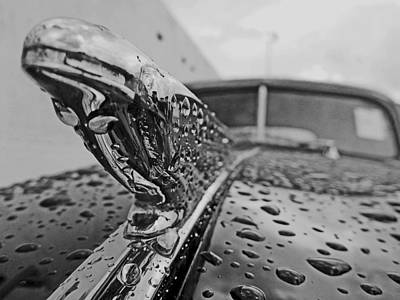 Photograph - B/w Chevy by John Collins