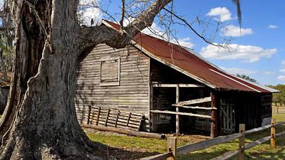 Photograph - Babb Farmhouse. Kissimmee Florida.  by Chris  Kusik