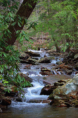 Photograph - Babbling Brook by Paul Mashburn