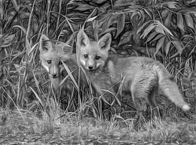 Fox Digital Art - Babes In The Woods 2 - Paint Bw by Steve Harrington