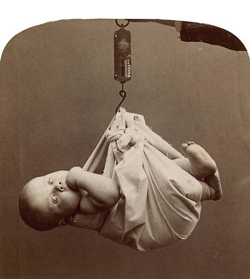 Photograph - Baby, 1901 by Granger