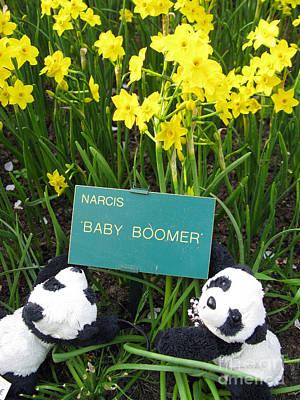 Photograph - Baby Boomers by Ausra Huntington nee Paulauskaite