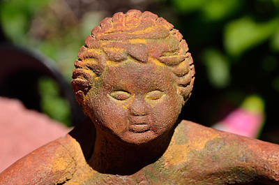 Photograph - Baby Buddah In Sunlight by William Jobes