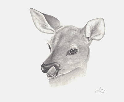 Art Print featuring the drawing Baby Deer by Patricia Hiltz
