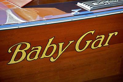 Photograph - Baby Gar by Steven Lapkin