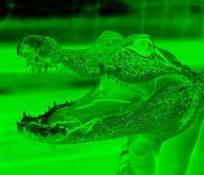 Irish Country Scenes Digital Art - Baby Gator Neg Green by Rob Hans