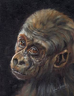 Gorillas Painting - Baby Gorilla by David Stribbling
