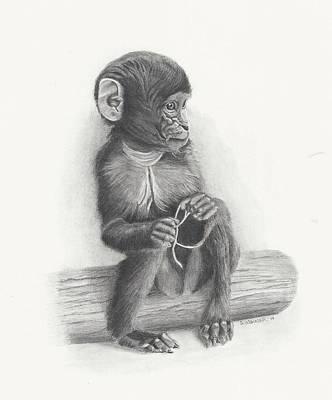 Cute Monkey Drawing - Baby Monkey by Sandra Weiner