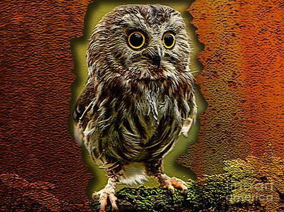 Baby Owl Art Print by Marvin Blaine
