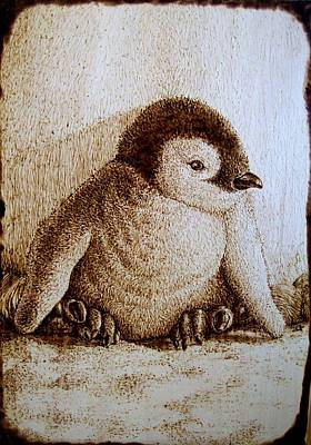Pyrography Pyrography - Baby Penguin by Cara Jordan