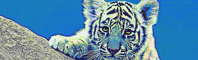 Digital Art - Baby Tiger- Blue by Jane Schnetlage