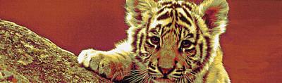 Digital Art - Baby Tiger Panorama by Jane Schnetlage