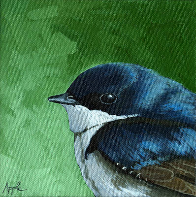 Tree Swallow Painting - Baby Tree Swallow by Linda Apple