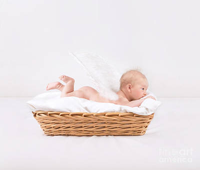 Naked Kids Photograph - Baby With Feather Wings by Anna Om