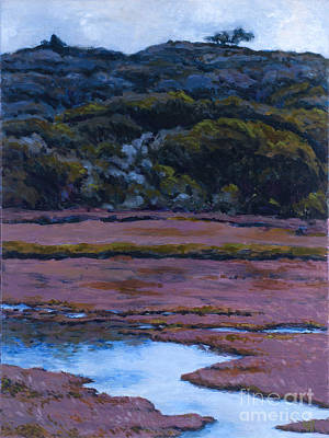 Back Bay At Morro Bay Art Print