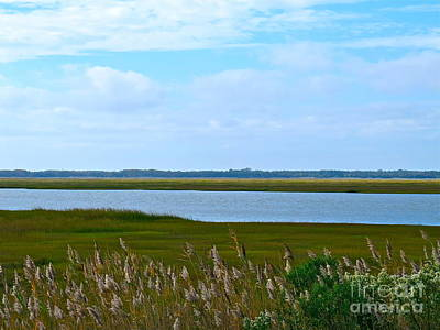 Photograph - Back Bay In Sea Isle  by Nancy Patterson