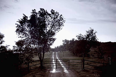 Moody Photograph - Back Country Road And Then The Rain Came by James BO  Insogna