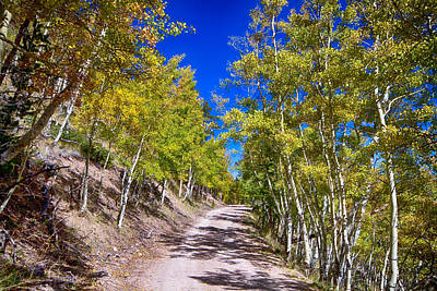 Colorado Autumn Landscapes Photograph - Back Country Road Take Me Home Colorado by James BO  Insogna