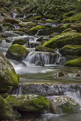 Back Country Stream Print by Jon Glaser