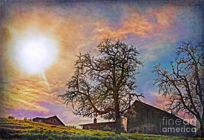 Photograph - Back Light by Hanny Heim