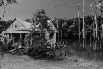 Photograph - Back Of The Bayou by Greg Sharpe