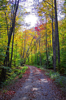 Gravel Road Photograph - Back Road In The Adirondacks by David Patterson