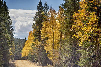 James Insogna Photograph - Back Road To Autumn by James BO  Insogna