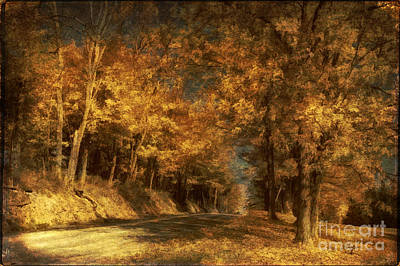 Country Road Digital Art - Back Roads by Lois Bryan