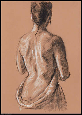 Drawing - Back Study by Diana Moses